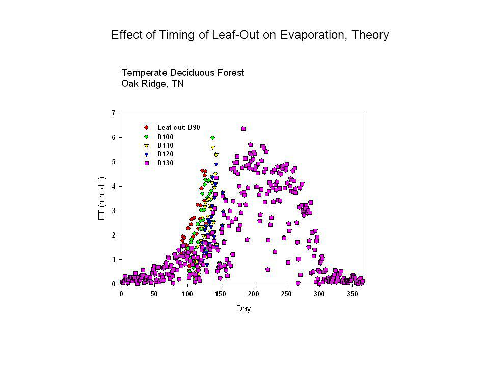 Effect of Timing of Leaf-Out on Evaporation, Theory