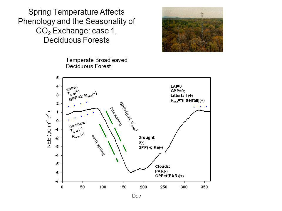 Spring Temperature Affects Phenology and the Seasonality of CO2 Exchange: case 1, Deciduous Forests