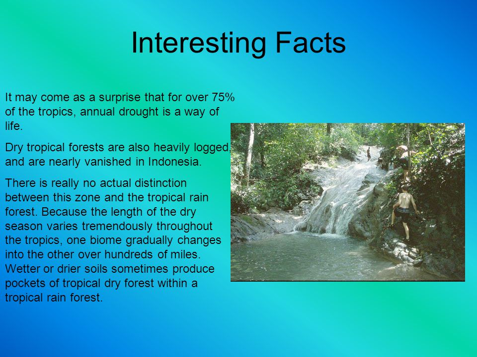 Interesting Facts It may come as a surprise that for over 75% of the tropics, annual drought is a way of life.