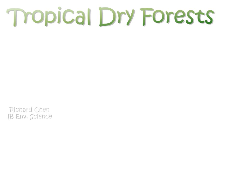 Tropical Dry Forests Richard Chen IB Env. Science