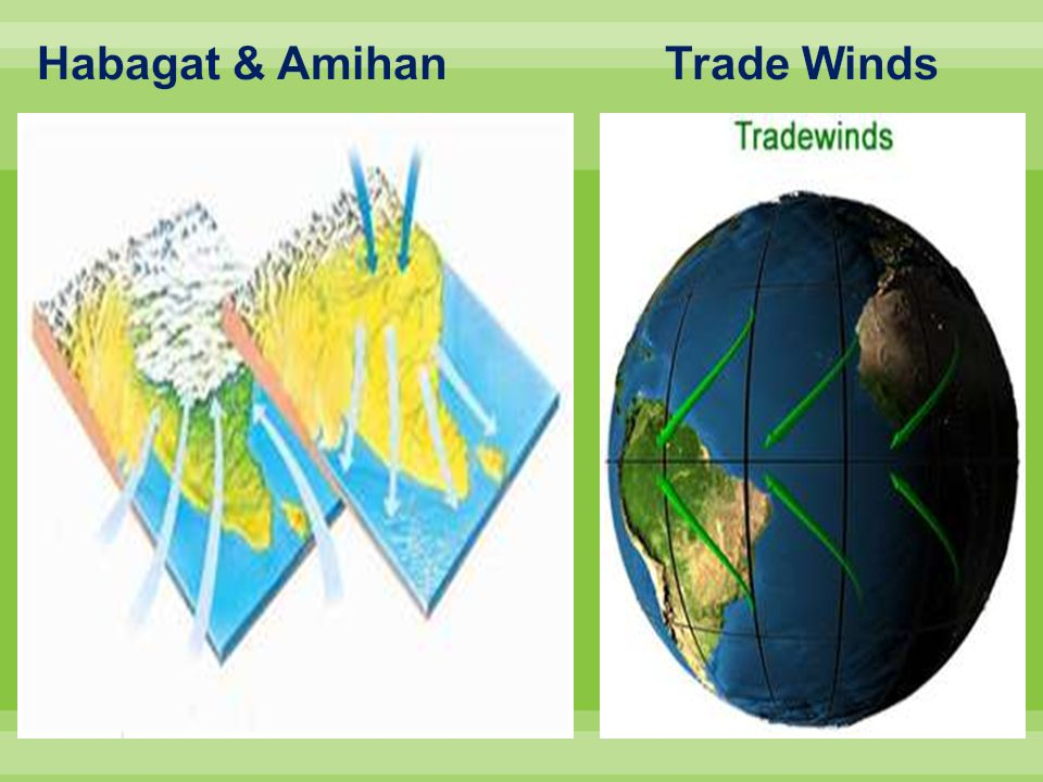 Habagat & Amihan Trade Winds