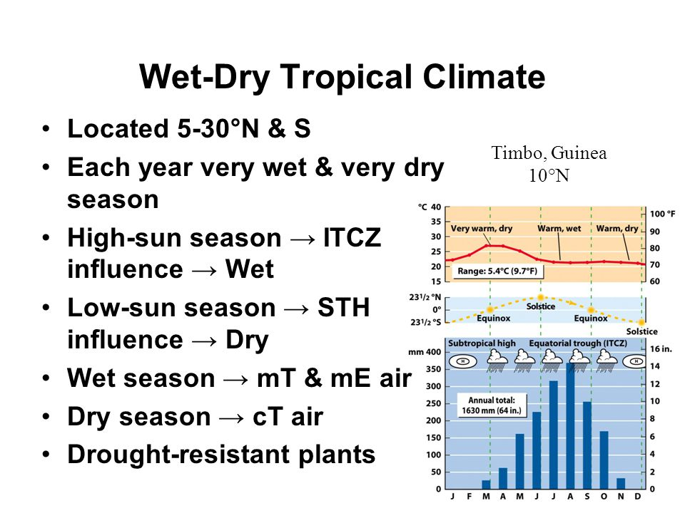 Wet-Dry Tropical Climate
