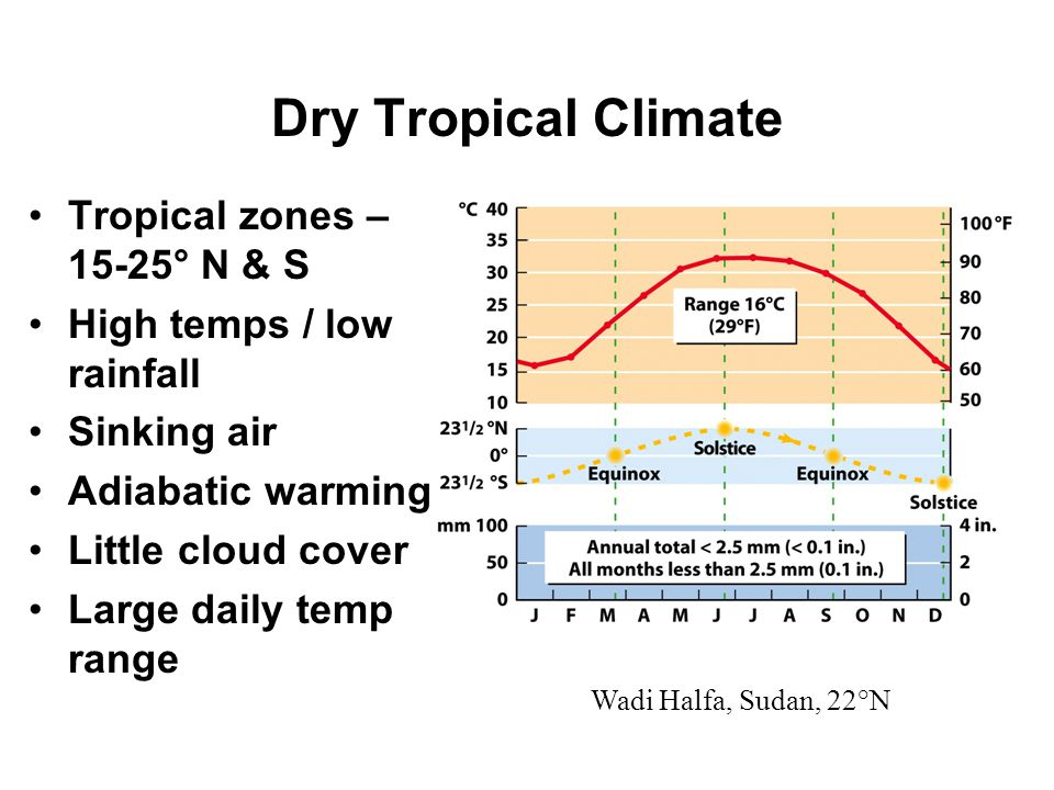 Dry Tropical Climate Tropical zones – 15-25° N & S