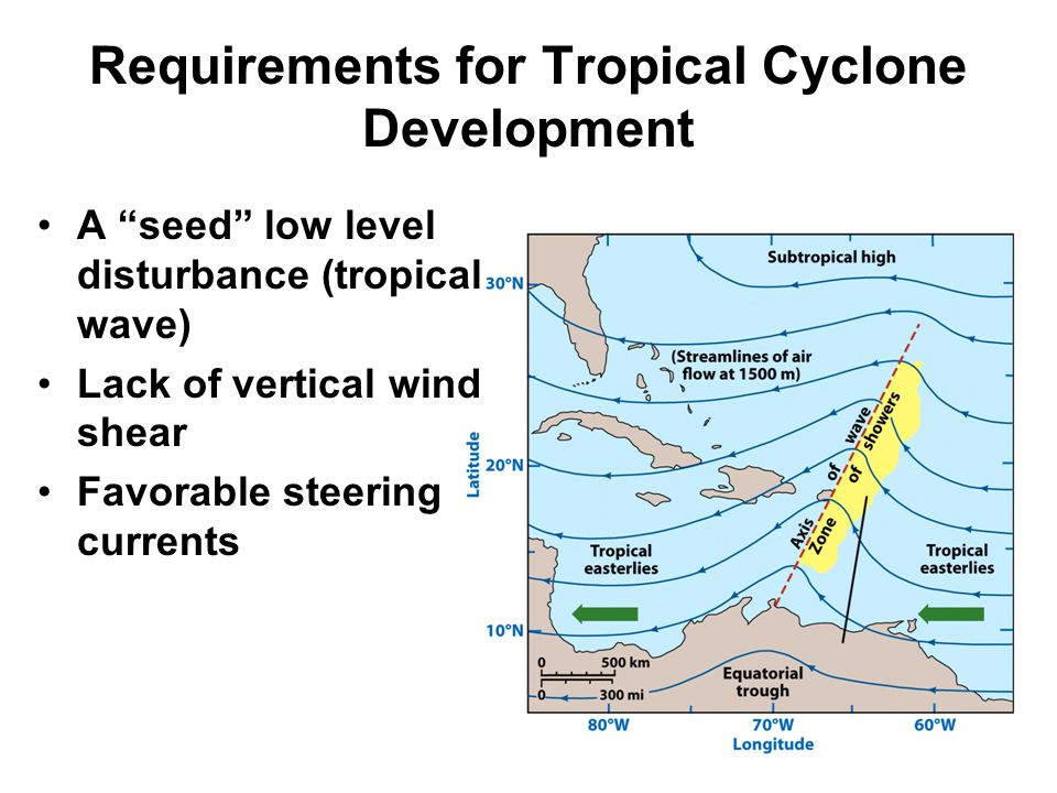 Requirements for Tropical Cyclone Development