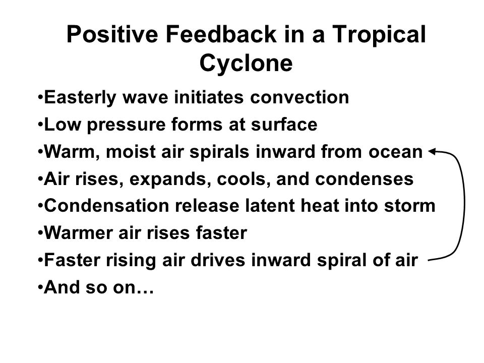 Positive Feedback in a Tropical Cyclone