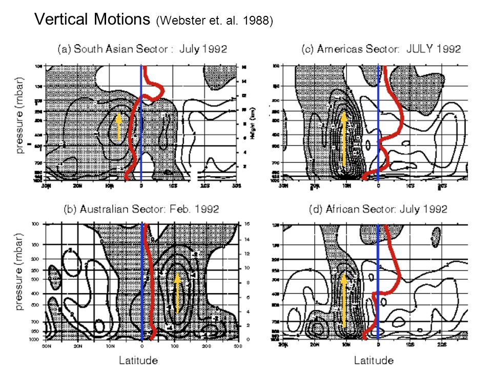 Vertical Motions (Webster et. al. 1988)
