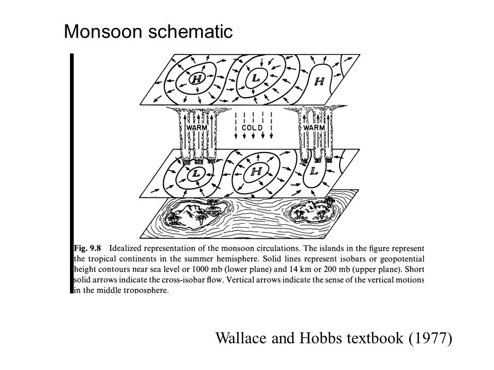Monsoon schematic Wallace and Hobbs textbook (1977)