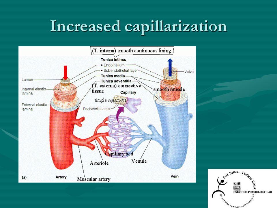 Increased capillarization