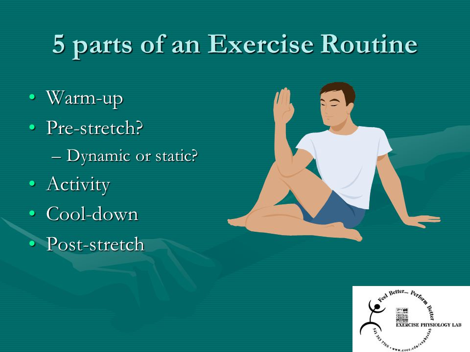 5 parts of an Exercise Routine