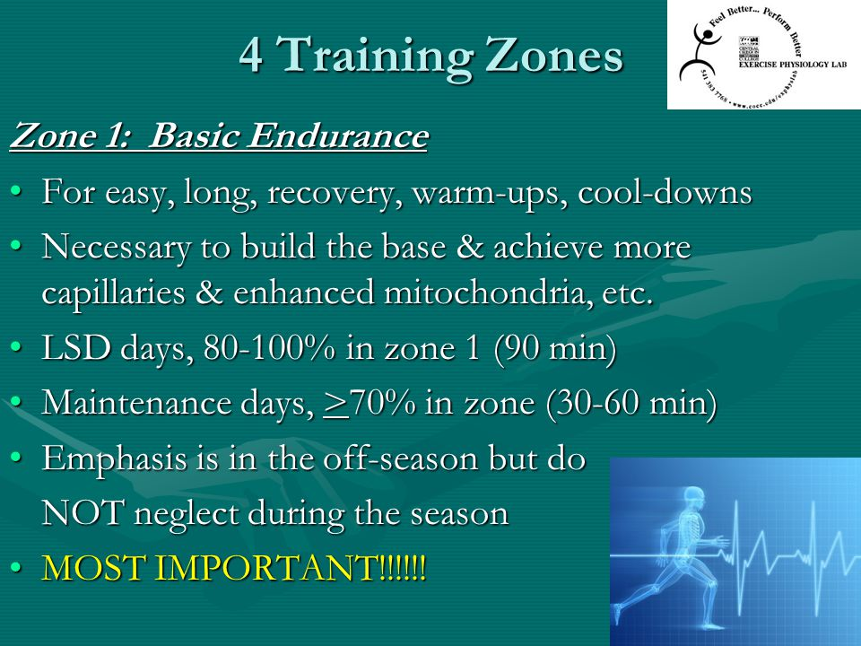 4 Training Zones Zone 1: Basic Endurance