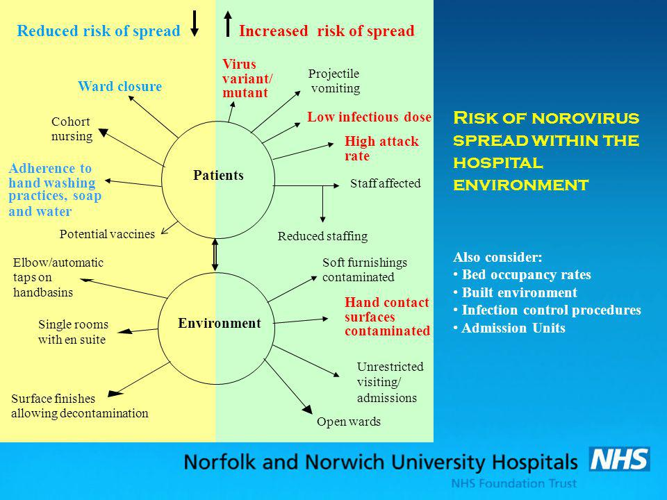 Risk of norovirus spread within the hospital environment