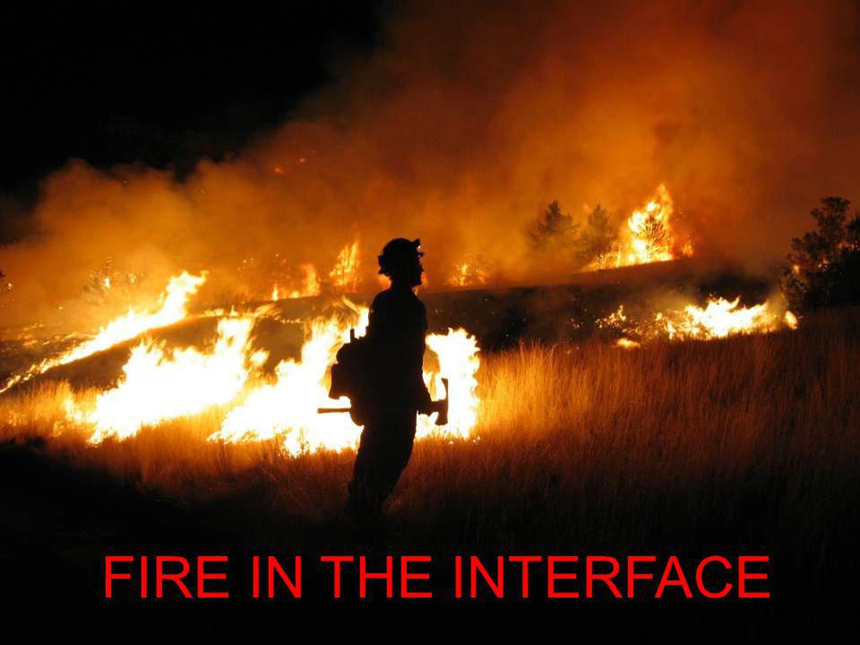 FIRE IN THE INTERFACE