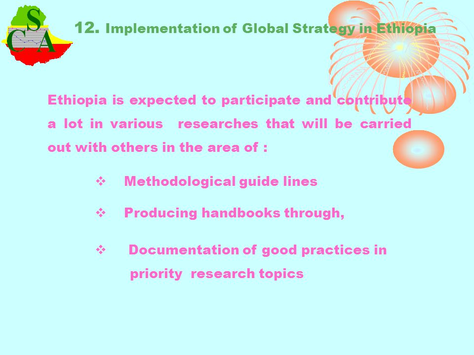12. Implementation of Global Strategy in Ethiopia