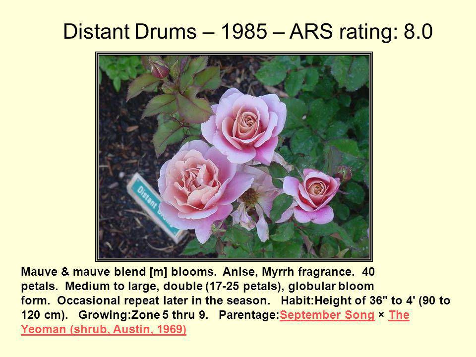 Distant Drums – 1985 – ARS rating: 8.0