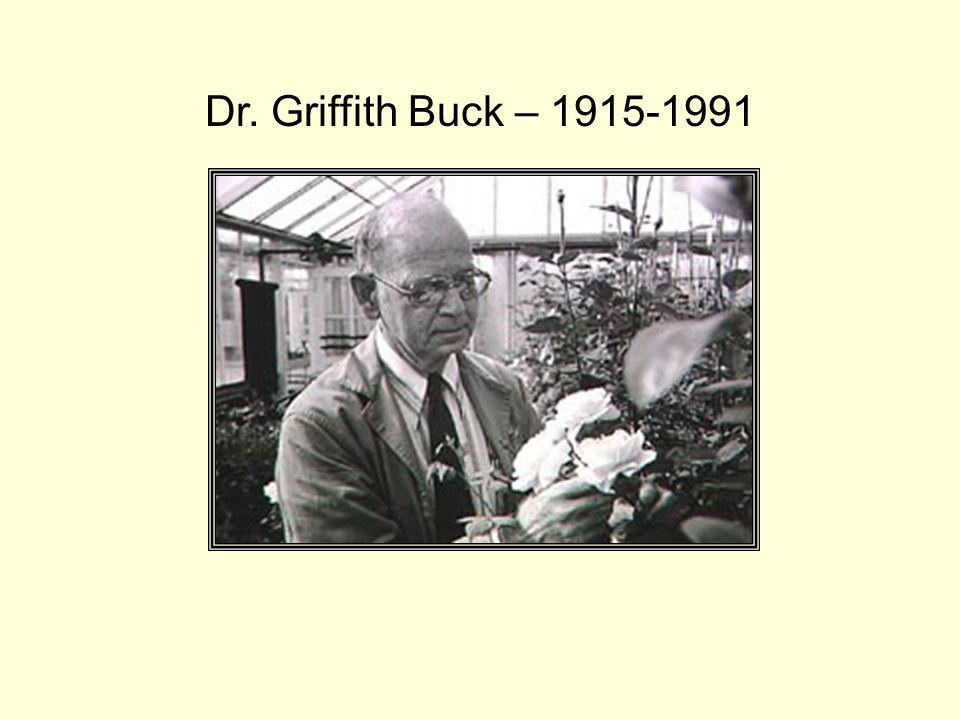 Dr. Griffith Buck – 1915-1991