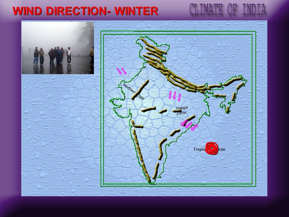 WIND DIRECTION- WINTER