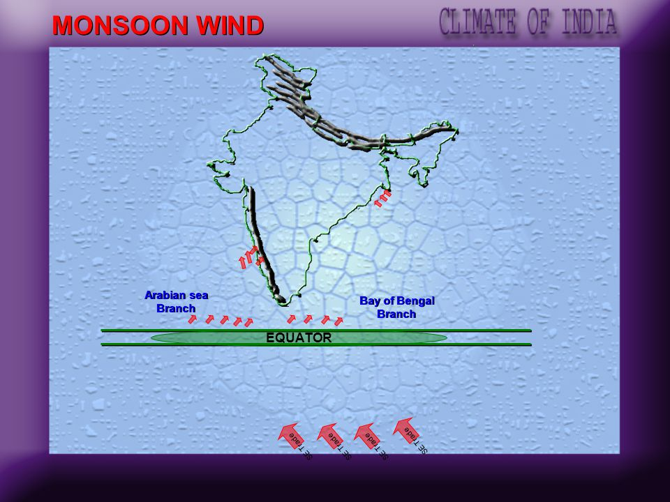 MONSOON WIND EQUATOR Arabian sea Branch Bay of Bengal Branch SE Trade