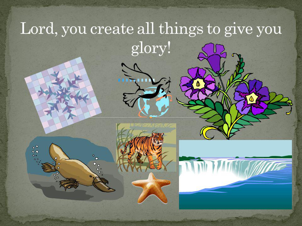 Lord, you create all things to give you glory!
