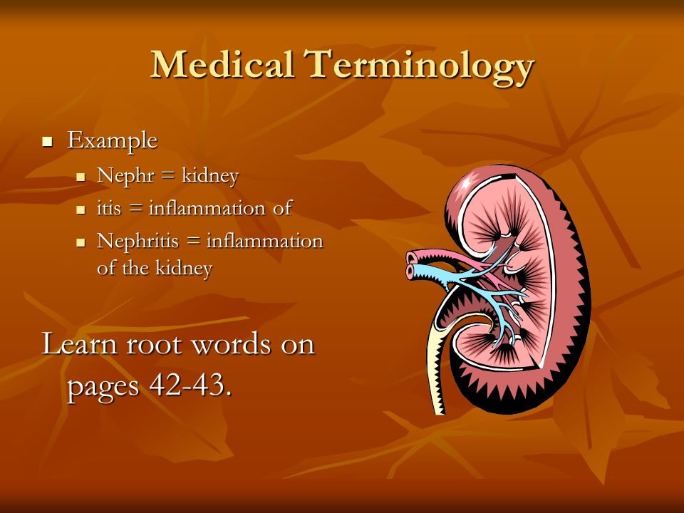 Medical Terminology Learn root words on pages Example