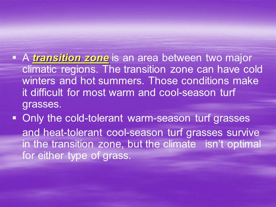 A transition zone is an area between two major climatic regions