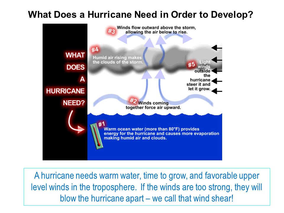 What Does a Hurricane Need in Order to Develop