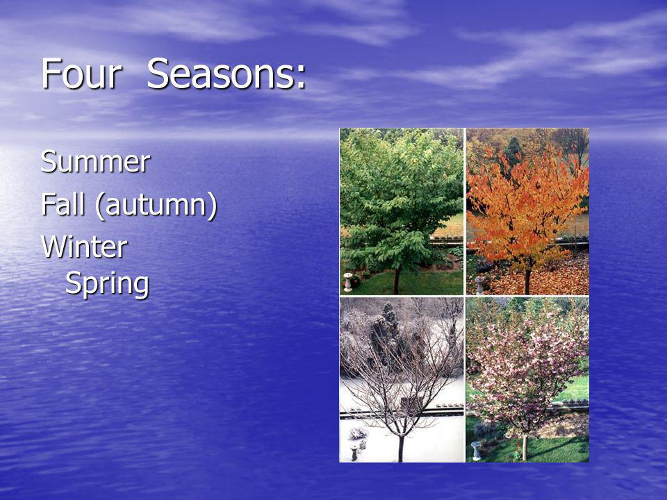 Four Seasons: Summer Fall (autumn) Winter Spring