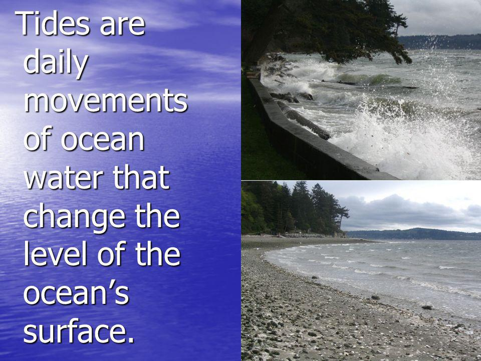 Tides are daily movements of ocean water that change the level of the ocean's surface.