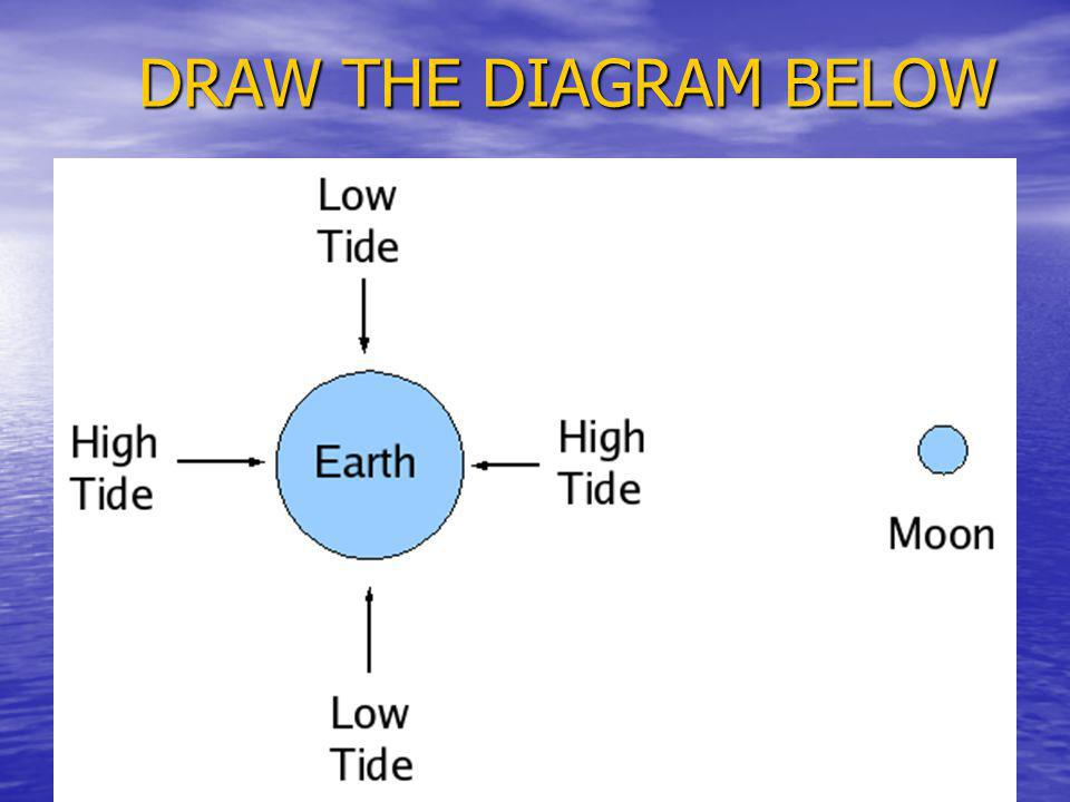 DRAW THE DIAGRAM BELOW
