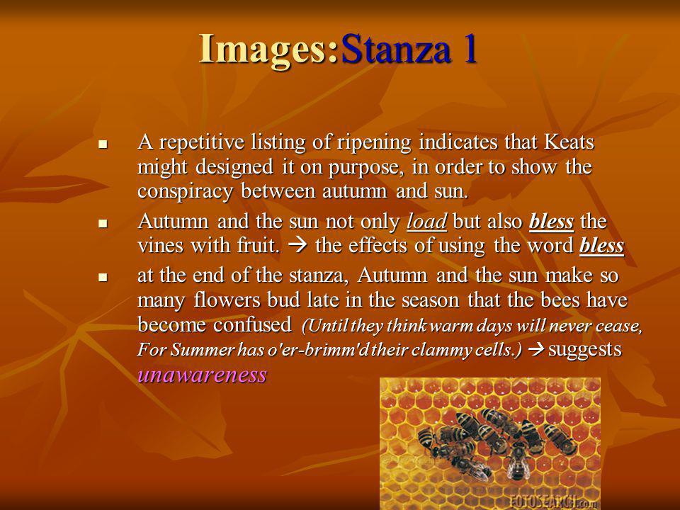 Images:Stanza 1