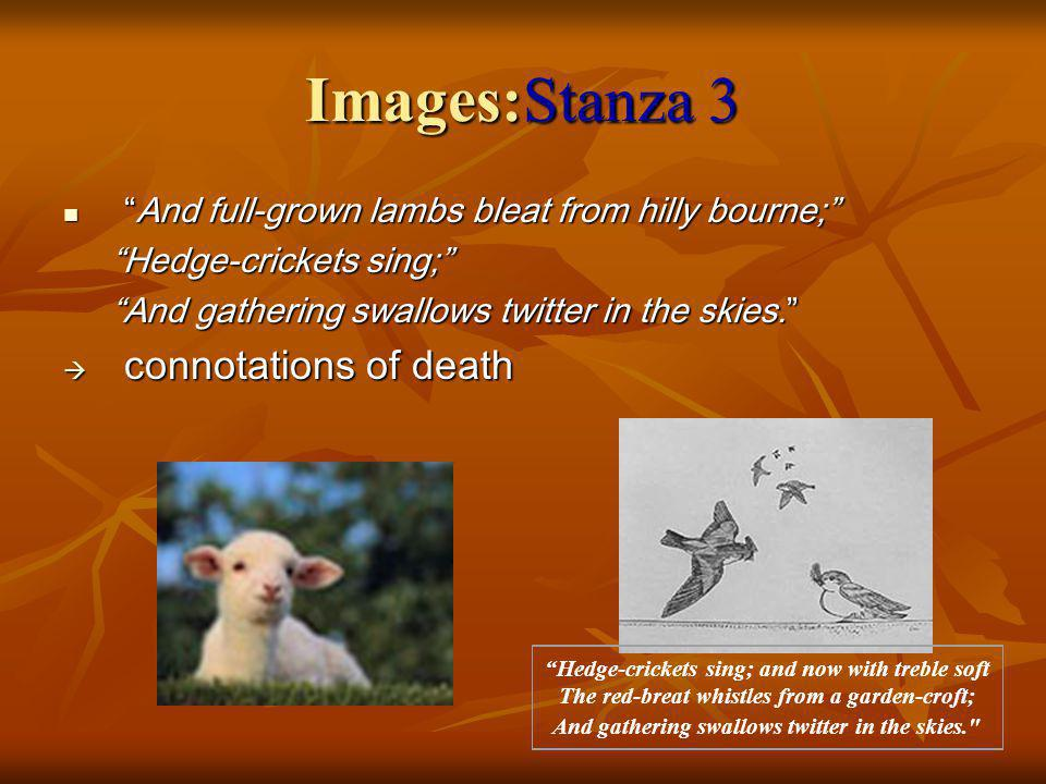 Images:Stanza 3 connotations of death