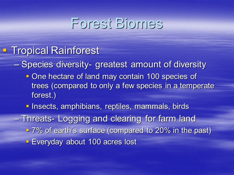Forest Biomes Tropical Rainforest