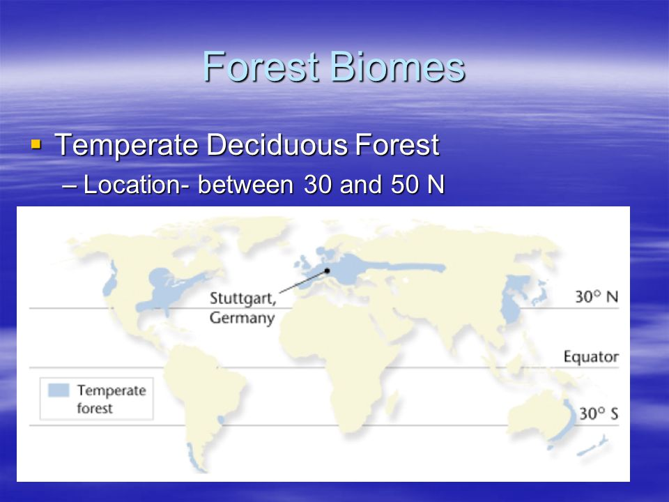Forest Biomes Temperate Deciduous Forest Location- between 30 and 50 N