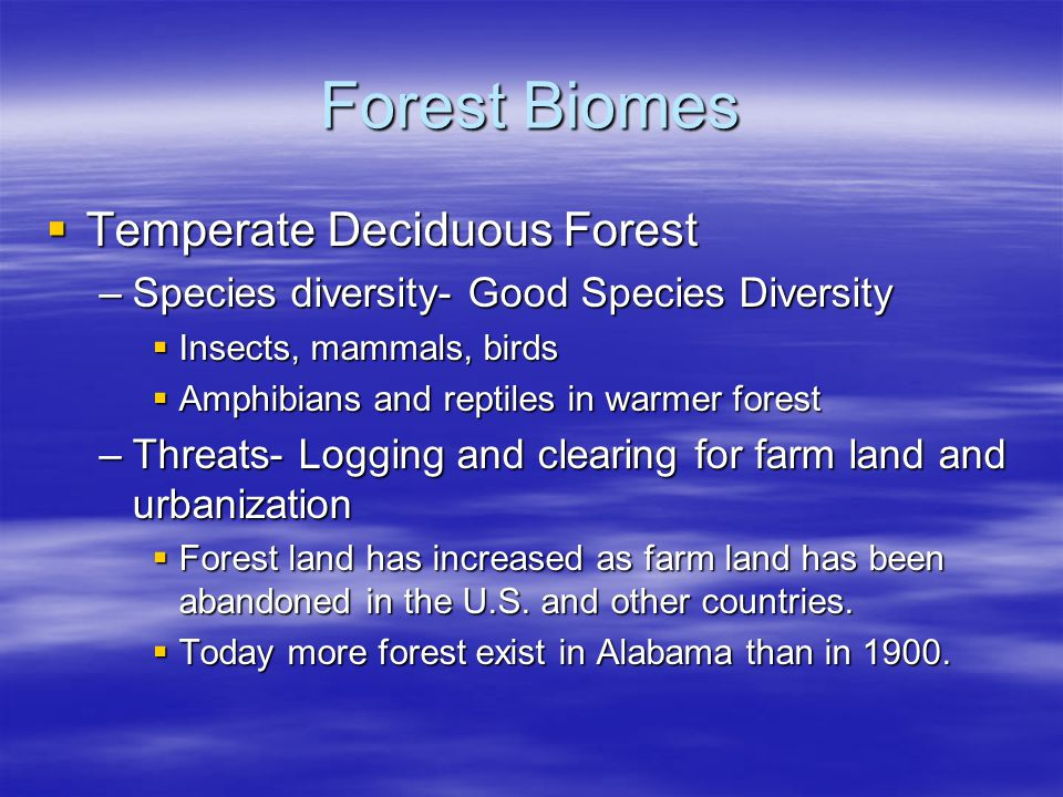 Forest Biomes Temperate Deciduous Forest