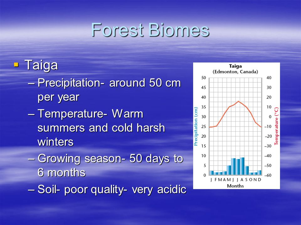 Forest Biomes Taiga Precipitation- around 50 cm per year