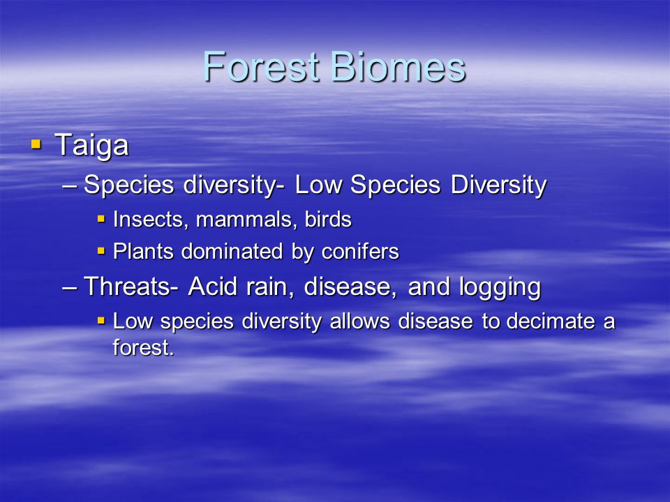 Forest Biomes Taiga Species diversity- Low Species Diversity