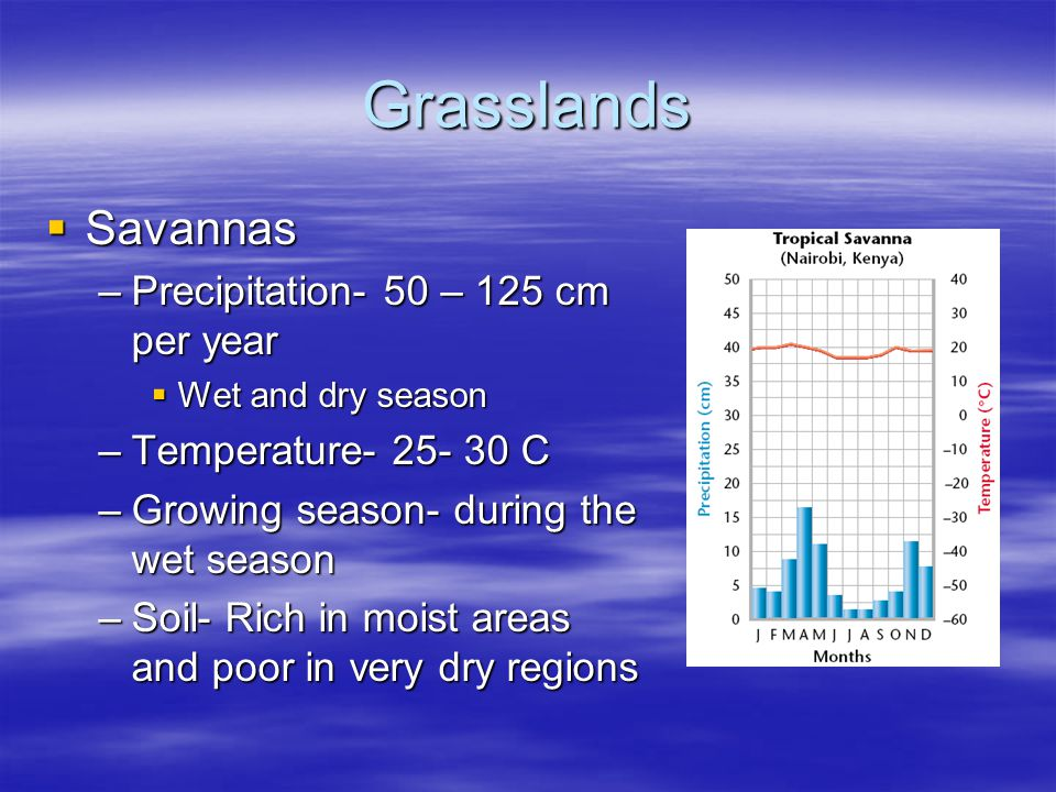 Grasslands Savannas Precipitation- 50 – 125 cm per year