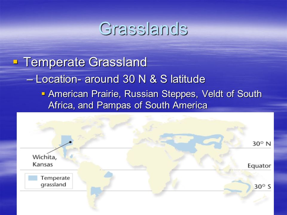 Grasslands Temperate Grassland Location- around 30 N & S latitude
