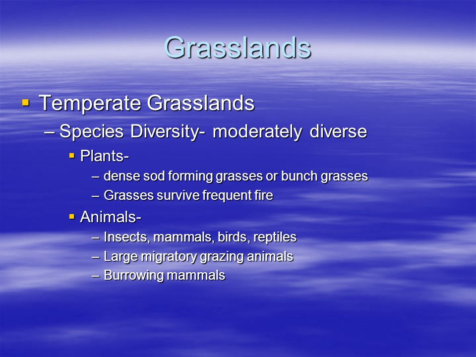 Grasslands Temperate Grasslands Species Diversity- moderately diverse