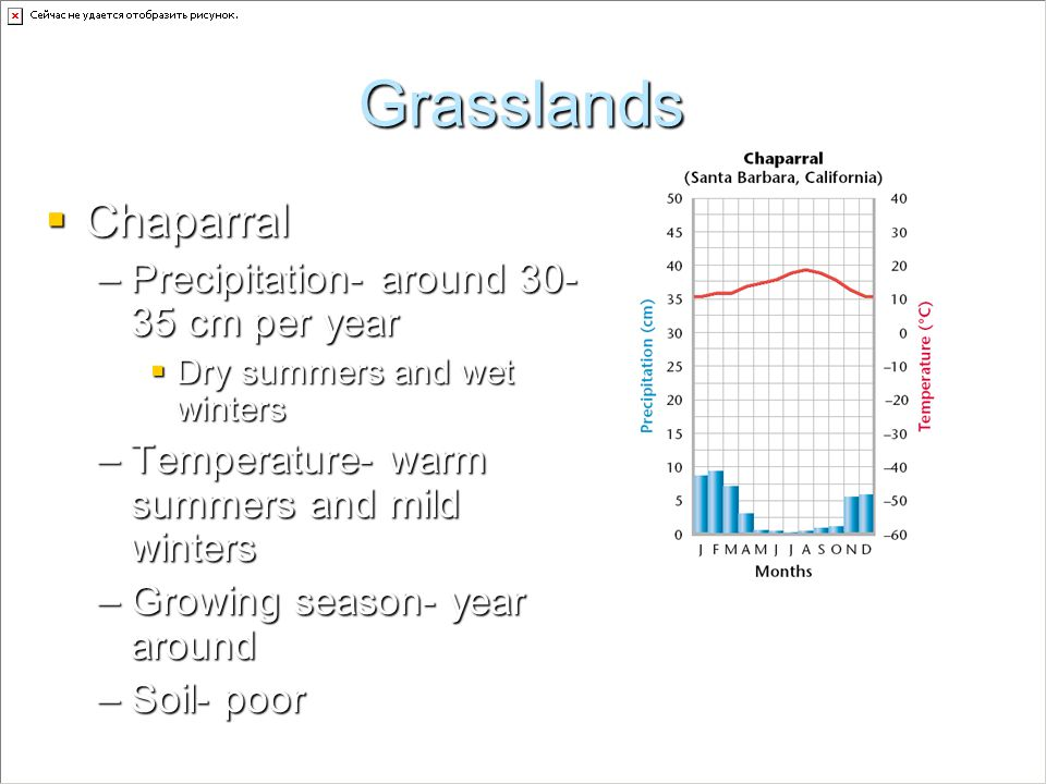 Grasslands Chaparral Precipitation- around cm per year