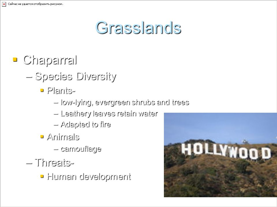 Grasslands Chaparral Species Diversity Threats- Plants- Animals