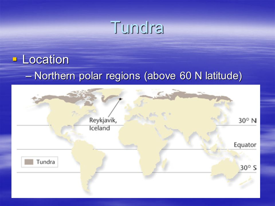 Tundra Location Northern polar regions (above 60 N latitude)