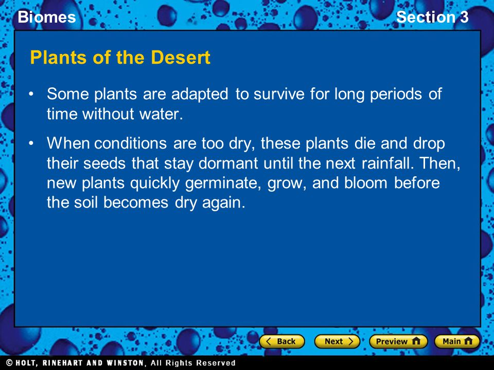 Plants of the Desert Some plants are adapted to survive for long periods of time without water.