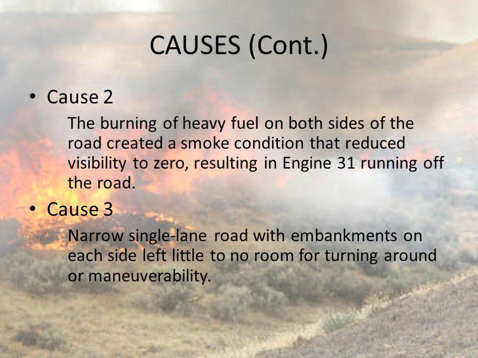 CAUSES (Cont.) Cause 2 Cause 3