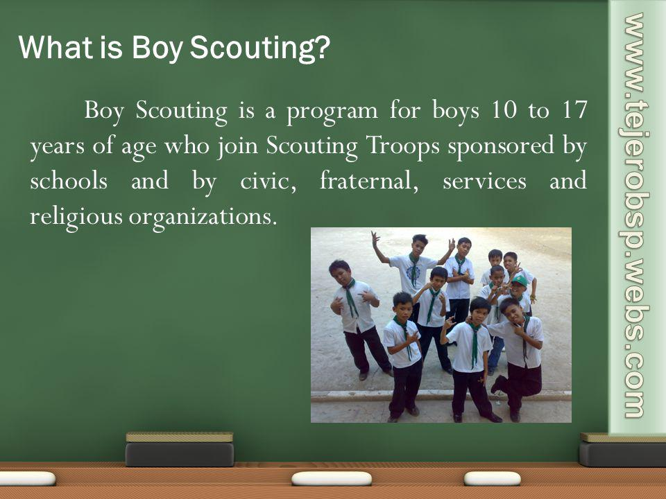 What is Boy Scouting www.tejerobsp.webs.com