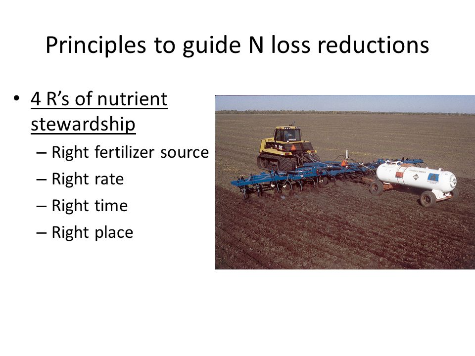 Principles to guide N loss reductions