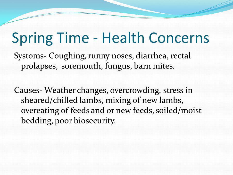 Spring Time - Health Concerns