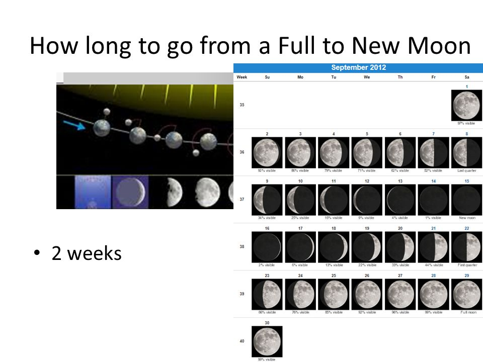 How long to go from a Full to New Moon