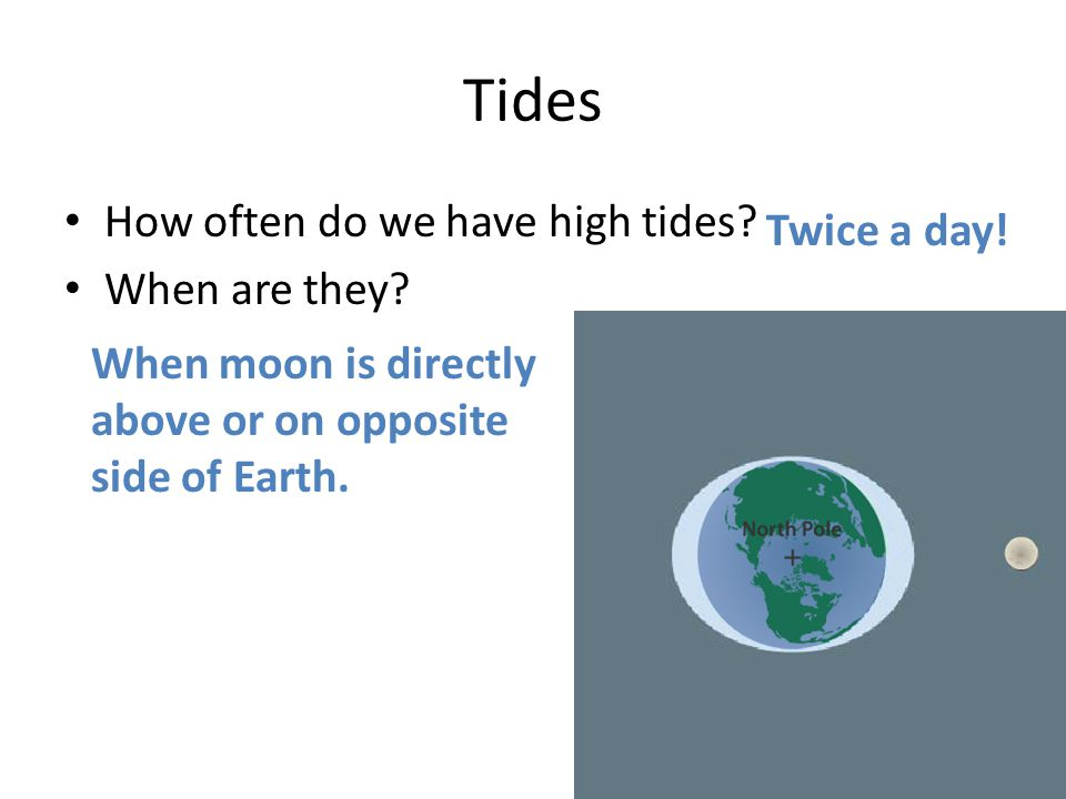 Tides How often do we have high tides Twice a day! When are they