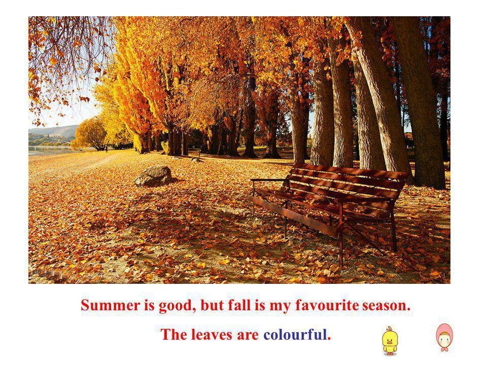Summer is good, but fall is my favourite season.