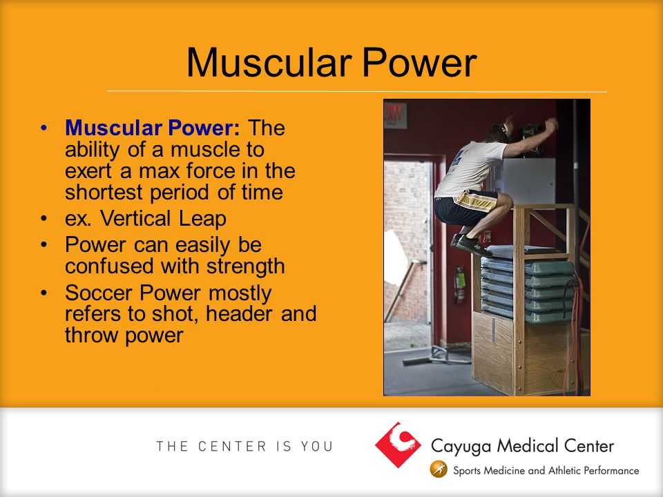 Muscular Power Muscular Power: The ability of a muscle to exert a max force in the shortest period of time.